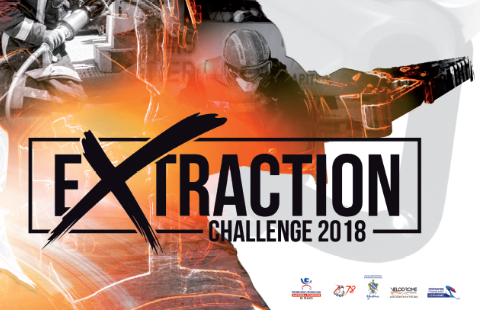 Vignette Extraction challenge 2018