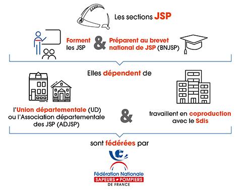 Les sections JSP au sein du réseau associatif