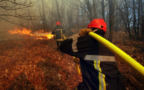 cp feux de forêt