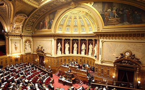 cp rapport senat