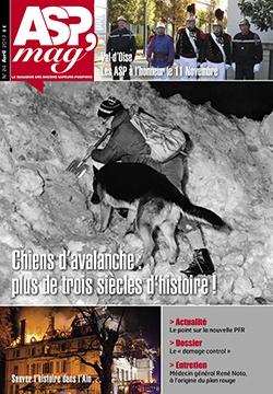 Chien d'avalanche : plus de trois siècle d'histoire