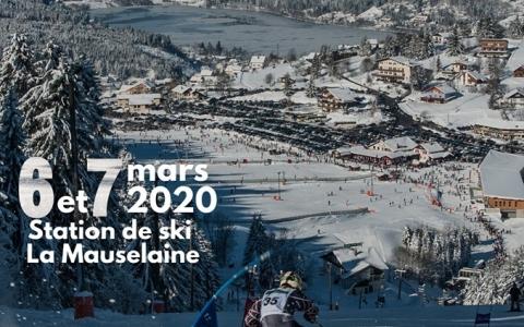 affiche ski alpin