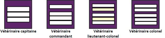 Grades du service de santé et de secours médical (SSSM) : vétérinaires SPV : vétérinaire capitaine, vétérinaire commandant, vétérinaire lieutenant-colonel, vétérinaire colonel